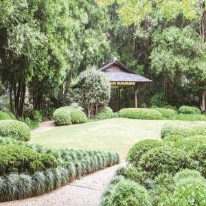 オーストラリア編 素敵スポット「マウント・クーサ植物園」